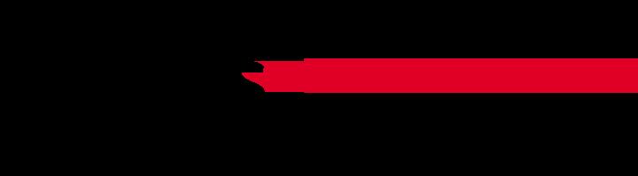 Logo Shuttles&Co